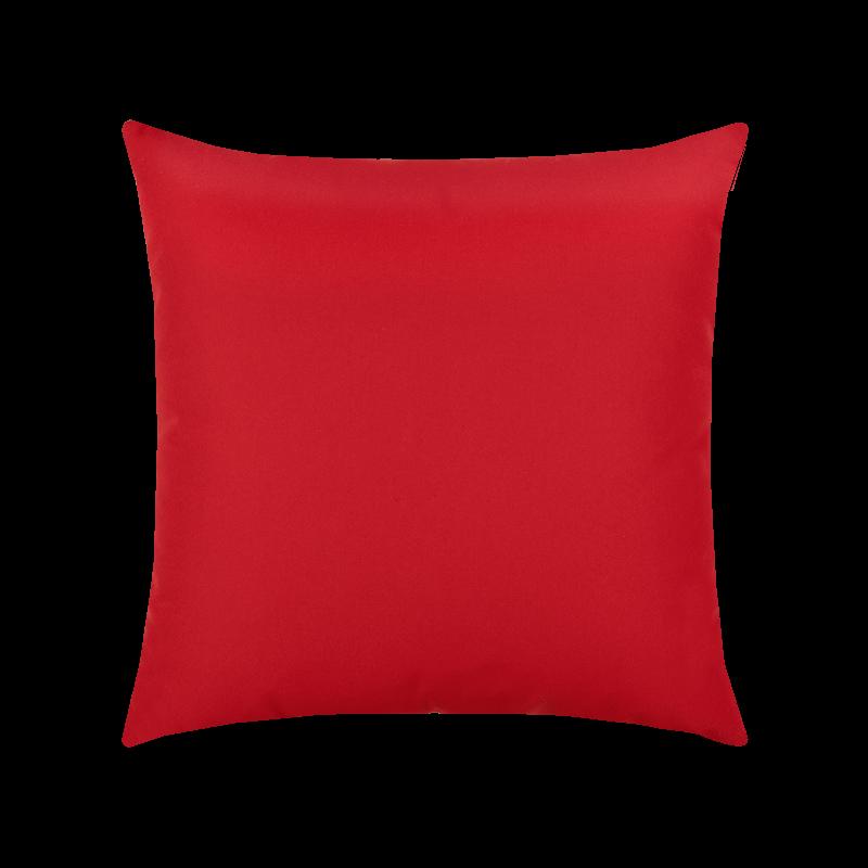 Canvas Logo Red Essentials 20