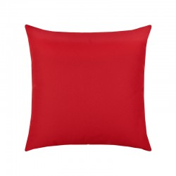 "Canvas Logo Red Essentials 20"" Pillow"